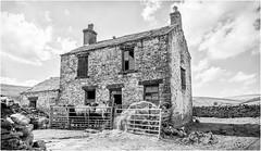 Hill End . (wayman2011) Tags: lightroomcanon5d wayman2011 bwlandscapes mono oldbuildings farming cows gates pennines dales teesdale harwood countydurham uk