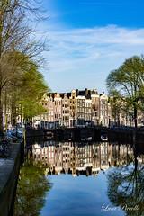 DSC_0227.jpg (lucapiccollo) Tags: amsterdam noordholland paesibassi nl