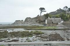 shades of grey (Caora) Tags: england swcp coast path southwestcoastpath