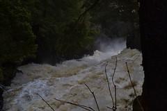 RunOFF (Craig Waythomas) Tags: rivière maskinongé quebec chute water raging river runoff flooding