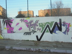 380 (en-ri) Tags: aher arrow nero rosa bianco foglioline little leaves torino wall muro graffiti writing