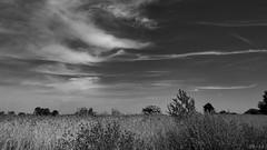 Clouds - Wolken (b_kohnert) Tags: blackandwhite schwarzweis monochrome einfarbig landscape clouds