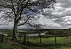 Tamar Estuary Meanders Around South Hooe. (Explored 30/04/18) (Lanstephan) Tags: gate tamar southhooe pen berepeninsula cornwall devon pentilliecastleestate