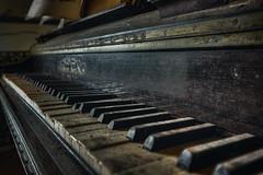 Soft melodies in silence (JG - Instants of light) Tags: piano keyboard shadows light darkness creepy abandoned vandalized decaying melodias silêncio teclado sombras luz escuridão arrepiante abandonado vandalizado decadente urbex urbanexploration exploraçãourbana nikon d5500 sigma 1020 portugal
