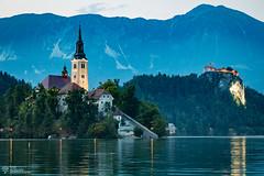 Lake Bled (timdowlingphotography) Tags: international bled radovljica slovenia si
