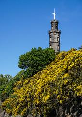 Nelson Monument, Edinburgh (p.mathias) Tags: edinburgh tower scotland scottish monument bluesky blue landscape landschaft uk unitedkingdom urban unesco sony history historical historic building a5100 europe