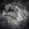 Rock (Guillermo Perez Santos) Tags: berggerpanchro400 blackandwhite analog film hasselblad500elm carlzeissplanar80mmf28 hydrophen fotografiaanalogacom filmdev:recipe=11922