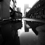 Griffintown Reflections thumbnail
