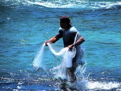 Fisherman (thomasgorman1) Tags: net fishing fisherman man canon candid outdoors sea ocean shore beach park island hawaii carlsmith hilo local throwing
