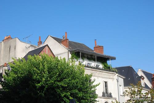 Тур, долина Луари, Франція InterNetri  France 017