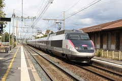 SNCF, TGV 64 (Chris GBNL) Tags: sncf train tgv 64 tgvsudest montélimar