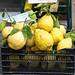 The Famous Amalfi Lemons
