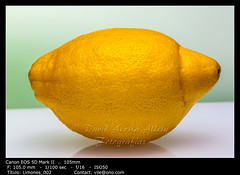 Lemons (__Viledevil__) Tags: agricultural agriculture citrus crop food fresh fruit gardening growth hanging healthy heap isolated juicy lemon nature organic plant ripe vitamin yellow