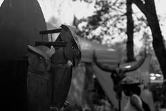 Plumes de métal (Jay/Be) Tags: jardin aiguebelette savoie plante sculpture cuisine exposition paille chapeau camping fleur nature vert couleur arbre cactus lac flore lake tree color green cokking veggie flower strawhat exhibition france compost floral art science