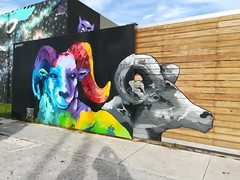Some amazing art at Wynwood Walls.