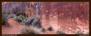 Potash Road Petroglyphs, Utah