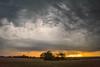 Same Night Adventure (thefisch1) Tags: storm thunder kansas tree horizon clouds angry sky field