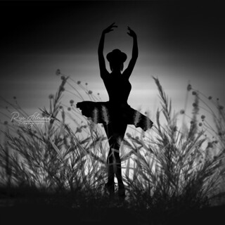 She laughed and danced with the thought of death in her heart