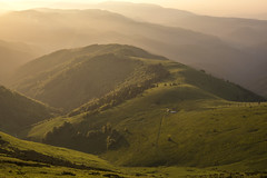 Magical sunrise (mystero233) Tags: sunrise sun dawn fatra velka mountains hills grass sheep trees forest remote landscape outdoor slovakia slovensko europe hory green lush sunrays