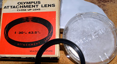 Rare_Bear-am (Guyser1) Tags: lens closeuplens olympuslens westyellowstone olympustrip35