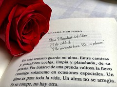 El placer de Leer.Día  del Libro. (lameato feliz) Tags: díadellibro alameda rosa libro