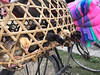 Chickens and mosquito nets (whitworth images) Tags: bamboo mosquitonet asia baby young rural nets chicks pokhara chickens village basket nepal kaski colourful bicycle indiansubcontinent bhakunde cycle bird