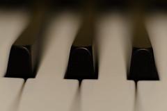 Keys (OgniP) Tags: macro
