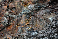 J18_7067 (JamesHou168) Tags: background detail natural material wallpaper weathered pattern abstract rough wall grunge outdoor surface design nature brown stone rocky grey mineral texture dark uneven mosaic gray textured taiwan green plant totem soil puzzle