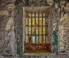 20171120_LANCASTER and WV_20171120-BFF_4974WV Penitentiary_HDR (Bonnie Forman-Franco) Tags: penitentiary abandoned abandonedphotography abandonedprison abandonedpenitentiary photography photoladybon bonnie prison jail window prisonwindow westvirginia westvirginiapenitentiary westvirginiaprison hdr nikon nikonphotography