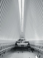 The Oculus 2 (RobertLx) Tags: architecture oculus newyork manhattan usa america building calatrava transport transportation lines monochorme modern contemporary people plaza