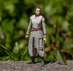 Rey (atari_warlord) Tags: 375 actionfigure hasbro kenner rey starwars theforceawakens thevintagecollection