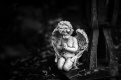 Neulich auf dem Friedhof (mkniebes) Tags: cemetery grave graveyard bokeh blackandwhite dof monochrome angel sculpture smcpfa77mmf18 pentax manualfocus contrast dark gloomy