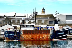 PD1023 Natalie B - Fraserburgh Harbour Scotland - 19/4/2018 (DanoAberdeen) Tags: pd1023 natalieb natalie pd1023natalieb danoaberdeen 2018 fraserburgh harbour fishermen trawlermen fish salmon scallops haddock cod mackrel trawlers fishingboat shellfish turbot hake scotland scottish northeastscotland scottishhighlands bonnyscotland seafarers berth seaport docks candid amateur nikon thebrooch brooch fraserburghscotland tug boat vessel ship autumn summer winter spring bluesky clouds aberdeen aberdeenshire grampian scottishwater fishinglife shipspotting broch thebroch