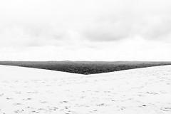 Dune du Pilat (Batix Ezeiza) Tags: dune duna pilat arcachon landes landak hondartza playa zb bw