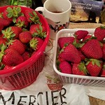 Strawberries Camarosa - Mercier Orchard thumbnail