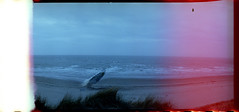 Horizon 008 (romain@pola620) Tags: lomo lomography lomo800 lomohorizon horizon 800 800iso 35 35mm panoramique pano argentique analog analogue analogique film pellicule sea mer merdunord northsea north nord blue accident fail failure low lowfi ciel sky plage sand dune sable