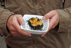 Hakodate Asaichi Uni Breakfast  函館朝市 北海道 (Anaguma) Tags: japan hokkaido hakodate asaichi uni sea urchin