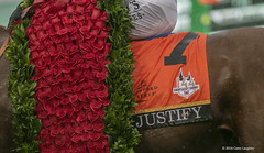 Flowers (Casey Laughter Media) Tags: 2018copyright kentucky kentuckyderby kentuckyderbywinner winner mikesmith winstar churchilldowns churchill race horse horses horseracing horserace racehorse justify scatdaddy coolmore keeneland sales winnerscircle nbc horseracingnation roses derby kyderby rain weather canon canon7dmii canonphotography canonusa canonlens 70200mm
