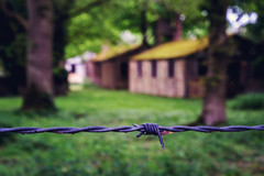 The wire.. (jonbawden50) Tags: history ww2 prisoner war camp essex barbed wire fence dof fuji