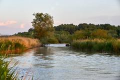 May - evening - the river Kuban (uiriidolgalev) Tags: may evening river kuban