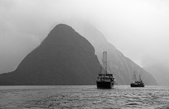 A Rainy Morning on Milford Sound (philhaber) Tags: milford sound newzealand fiordland fjord fiord mountain rain fog mist boat milfordsound