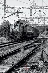 Fumigando (antoniojosehuertalopez) Tags: train rail tren locomotive locomotora fumigar adif