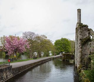 The River Avon in Christchurch, Dorset UK