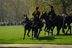 The Queen's 2018 Birthday gun salute - 49 (D.Ski) Tags: 2018 queens queen birthday gun salute royal park horse horses april westminster london nikon 2470mm 200500mm thekingstrooprha thekingstroop parade thequeen hydepark d700 nikond700