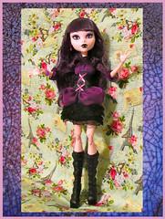 Large Monster High (M.P.N.texan) Tags: doll vinyl modern toy mattel monsterhigh