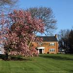 Spring in Virginia thumbnail