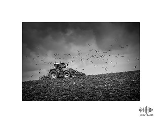 Plough the fields and scatter