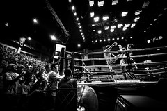 Bangkok (tomabenz) Tags: zeiss asia noiretblanc contrast bangkok street photography monochrome boxing people urbanexplorer bw bnw black white sony a7rm2 thaiboxing noir blanc blackandwhite sonya7rm2 streetphotography lumpini