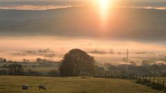 Sunshine in my life (PentlandPirate of the North) Tags: dawn sunrise mist valley biddulphmoor staffordshire moorlands spring peakdistrict pylon beginning ~flickrinnes flickrinnes