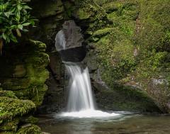 St Nectan's Glen (symzie) Tags: nectans stnectansglen cornwall waterfallincornwall waterfallneartintagel tintagel sacredplace landscape gh5 panasonicgh5